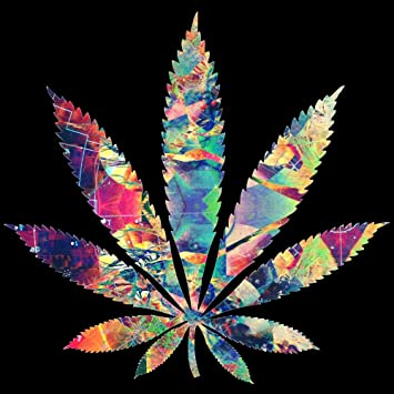 side effects of cannabis in relation to cannabis and aging